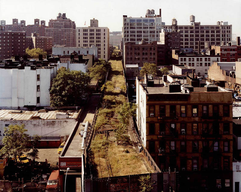 The High Line before the NYC Department of Parks & Recreation and Friends of the High Line started work.