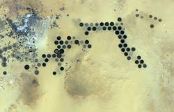 Photographs from Space: Libya's Al Jawf Oasis